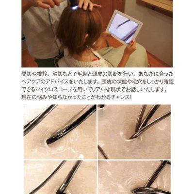【ワークショップ】毛髪診断士の無料カウンセリング会